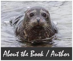 Seal_About1a